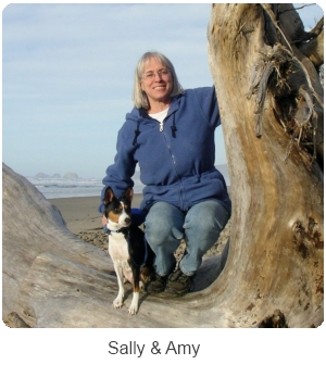 Training a Dog. Sally and Amy